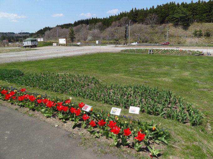 木古内・サラキ岬