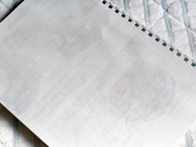 コクヨ「ソフトリングノート」